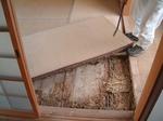 根太・畳に及ぶシロアリ被害