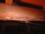 天井の梁丸太のシロアリ被害